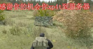DayZ Chinese Security