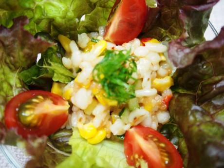 大麦サラダ