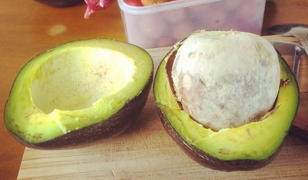 Avocado in Bolivia