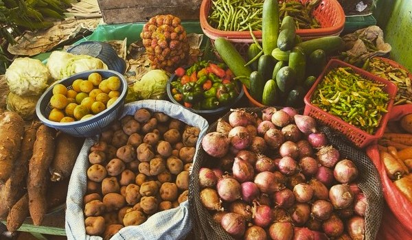 Potato diversity in Bolivia