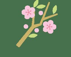 ひな祭り 花