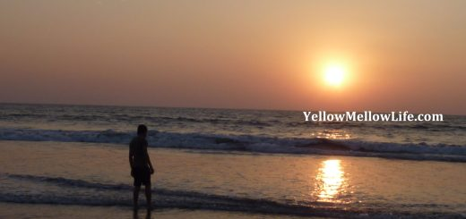 Travel to Goa Review