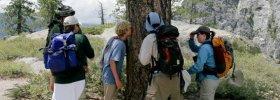 Yosemite Nature Tours