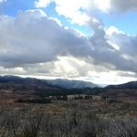 Yosemite-Foresta-Panorama-YExplore-DeGrazio-iPhone-Jan2014
