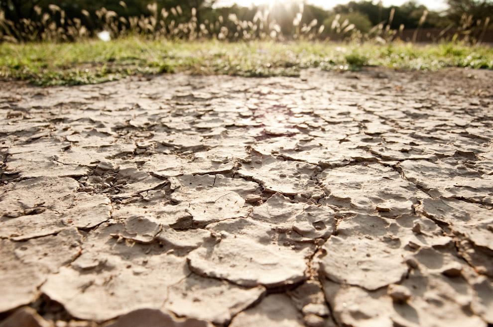 Siguiendo con los recorridos del 2010. En nuestra expedición por el chaco recogimos imágenes interesantes, como estas grietas en el suelo producido por la sequía en la zona de Boquerón, terreno característico del Chaco Paraguayo (Elton Núñez - Boquerón, Paraguay)