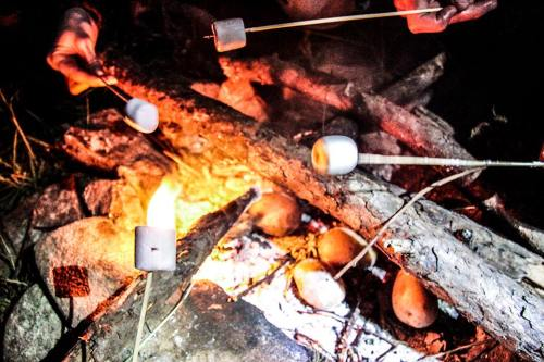 marshmallow, ateş, kamp