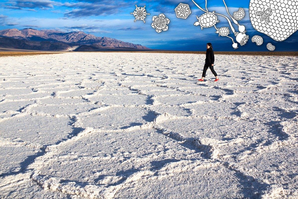 Salt Flat and Hexagons