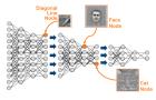 인공지능은 의료를 어떻게 혁신할 것인가 (4) 딥러닝 기반의 영상 의료 데이터 분석 (상)