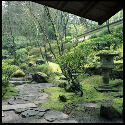 japanesegarden4.jpg