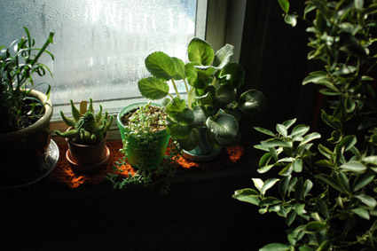 Crocheted Windowsill Cozy