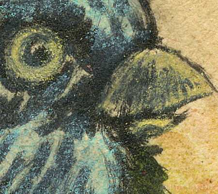 Blackbird (detail)