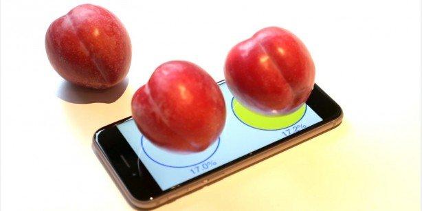 iphone-6-scale-614x307