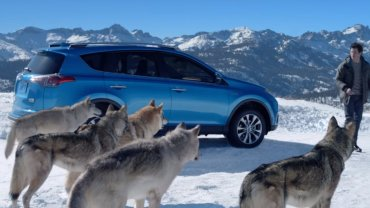 Wolf-pack Toyota commercial