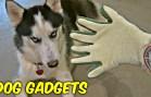 Random dog gadgets put to the test