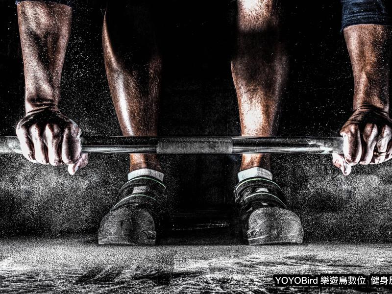 YOYOBird-SPORT-muscles copy
