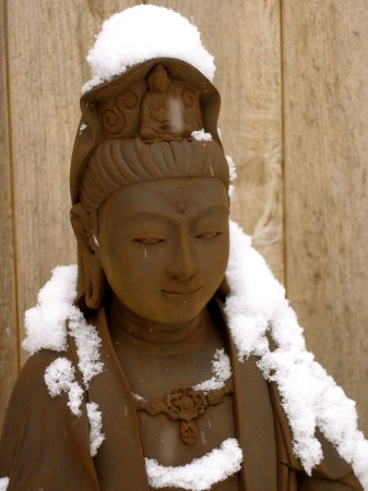 BuddhaInSnow
