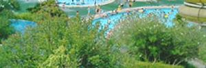 アドベンチャープール(プール)