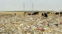 Un brutal documental muestra la mala gestión de los vertederos en la capital china