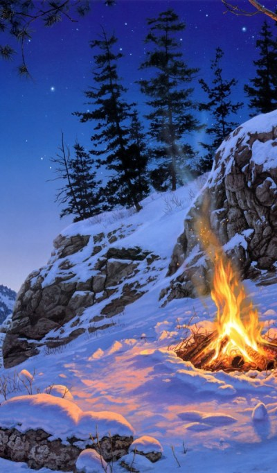 Trees, Landscape, Fire Desktop wallpapers 600x1024