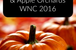 Pumpkin Patches, Apple Orchards, Corn Mazes, and Fall Festivals in WNC #Fall2016