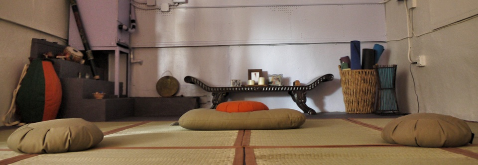 Zen Mystery Integral Curriculum