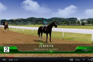 Virtual Race of Champion