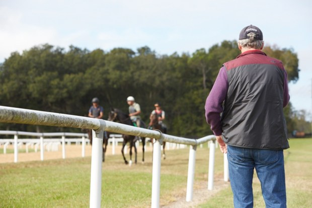 Trainer John Shirreffs watches a group of yearlings on the track. Photo by Tyler Matson.
