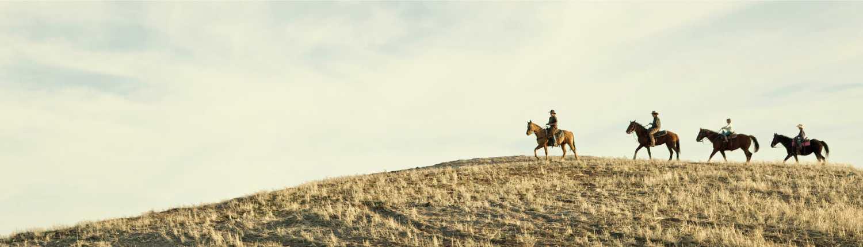 Zion Horseback Riding