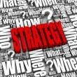 Wat is jouw HR strategie voor de flexibele schil?