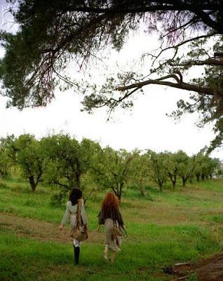 jesień-w-sadzie