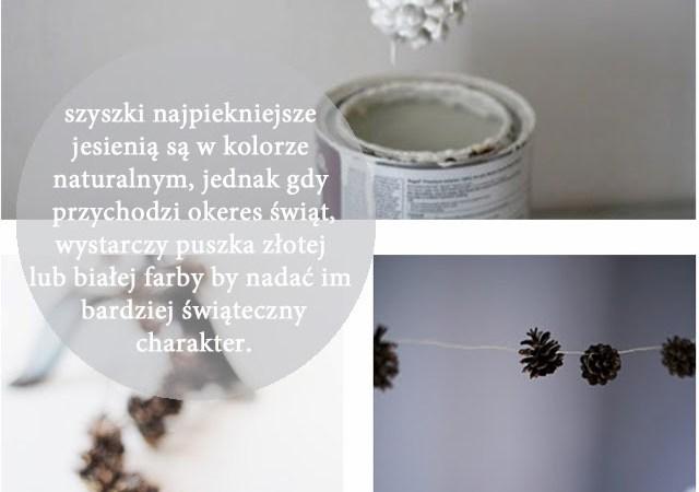 szyszki-jesienią