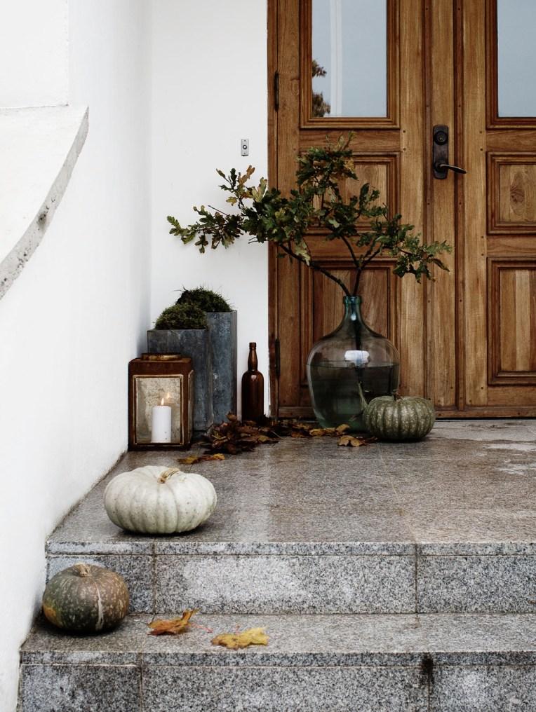 Daniella-Witte_stillife_autumn-22