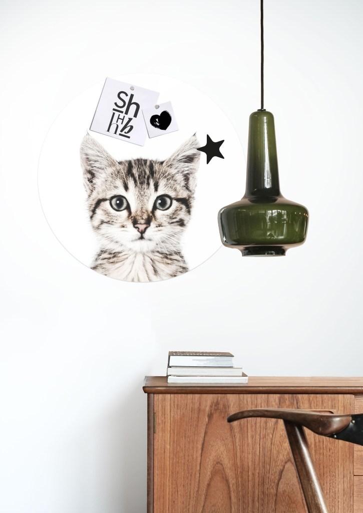 MAGNET STICKER CAT