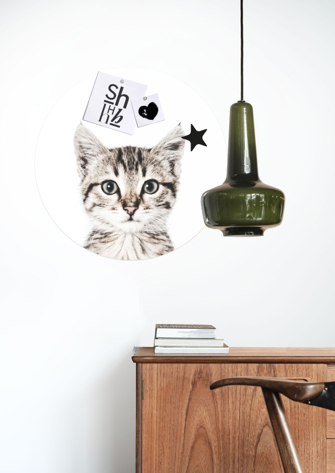 MAGNET STICKER CAT