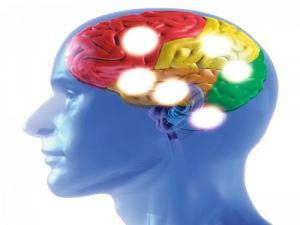 302233_mozek-zdravi