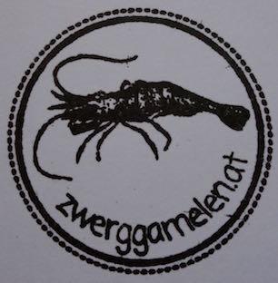 Logo zwerggarnelen.at