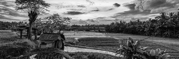 Indonesia v2 black & white