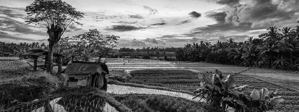 Indonesia v2 black & white