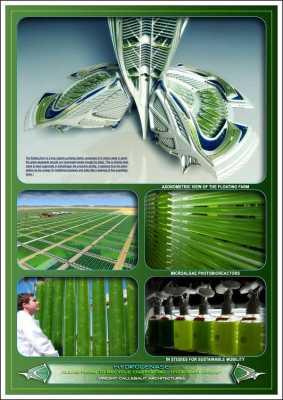 Algae Farm Diagram