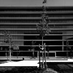 Exterior View (Images Courtesy FG+SG Fotografia de Arquitectura)
