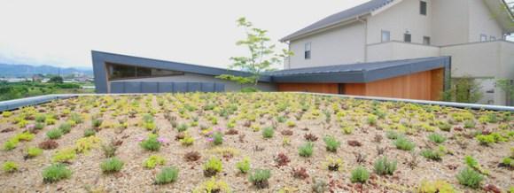 Rooftop gardening of parking (Image Courtesy Mitsutomo Matsunami)