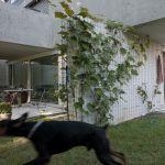 Ground floor garden villa (Image Courtesy Walter Mair)