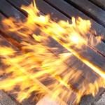 Burned wood (Image Courtesy Ossip van Duivenbode)