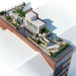 Roof garden Rendering