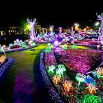 Imagination Light Garden