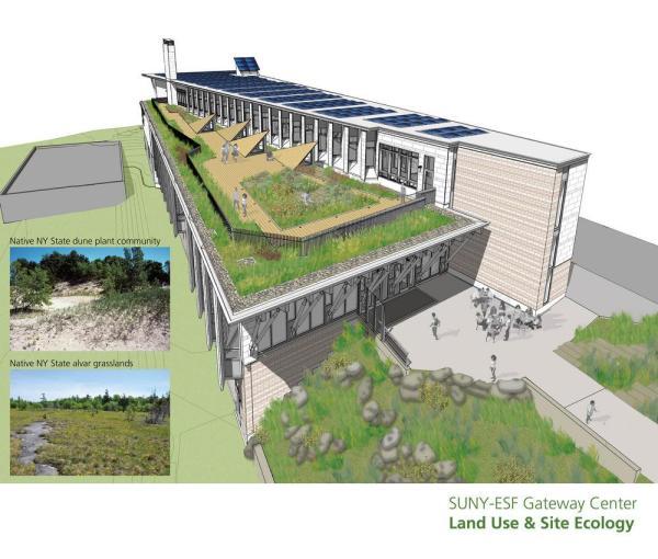 Green roof, rain gardens, solar adaptations , Image Courtesy © Architerra Inc