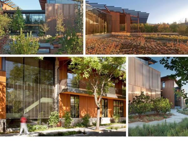 A building set within a vibrant, regenerative ecosystem., Image Courtesy © Jeremy Bittermann