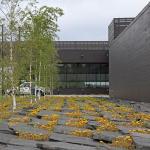 Stone & Sedum ,  Image Courtesy © Snow Kreilich Architects