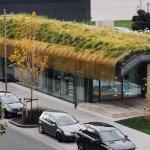 Te Kaitaka 'The Cloak' by Fearon Hay Architects