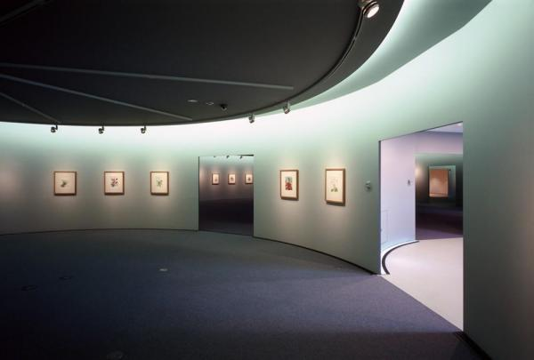 the display spaces, Image Courtesy © Shigeru Ohno